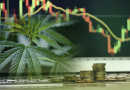 The Top Cannabis Stocks Seeing Higher Highs